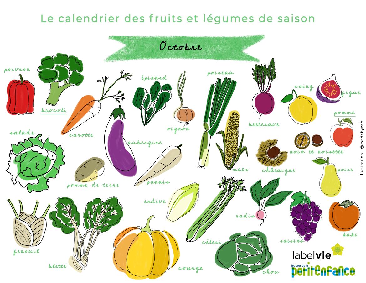 Calendrier des fruits et légumes de saison d
