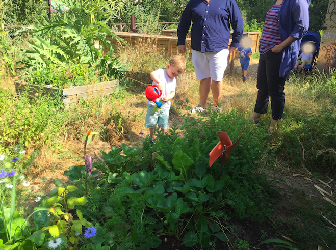 garçon arrosant des plantes