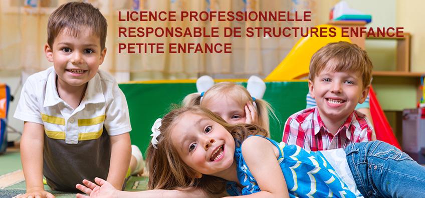 licence pro RSEPE