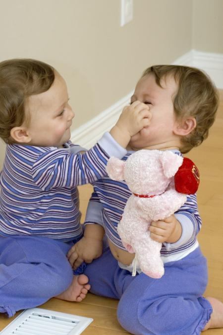 Bébés qui se disputent