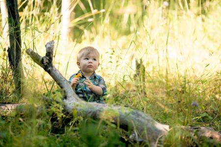 enfant sur branche