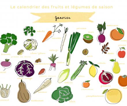 calendrier des fruits et légumes de janvier