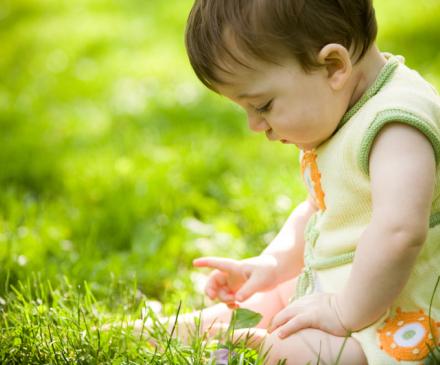 bébé dans l' herbe