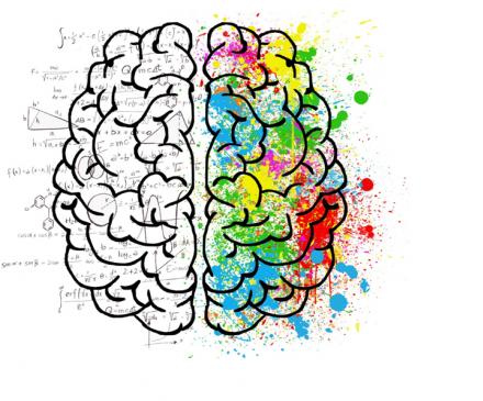 dessin cerveau